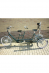 Roll-on: Twinny Plus tandem van Raam